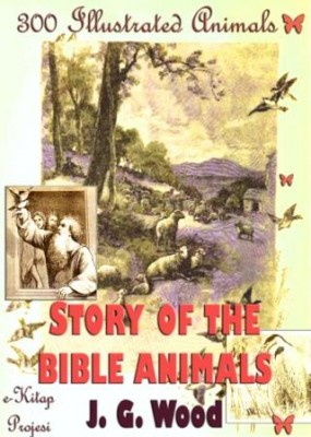 Story of the Bible Animals: [300 Illustrated Animals]
