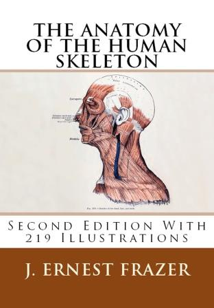 The Anatomy of the Human Skeleton