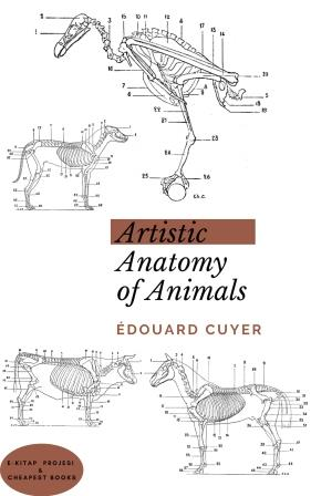 Artistic Anatomy of Animals